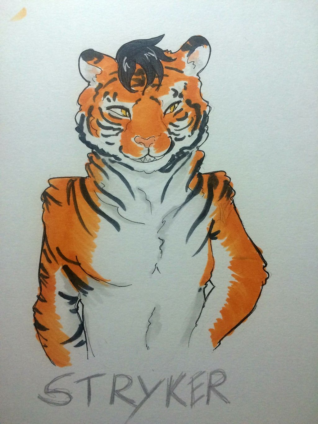 Most recent character: Strykertigerpaws