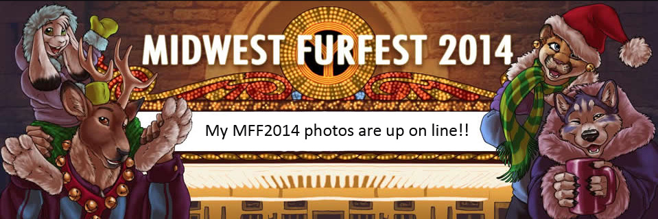 Most recent image: My MFF2014 photos are up on line!!