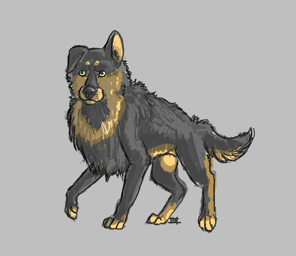doggie doodle
