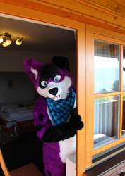 What? It is Fursuit Friday again?