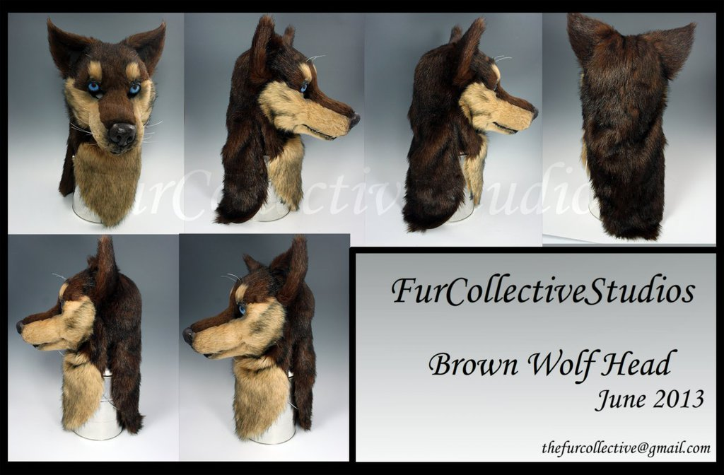 Brown Wolf Head