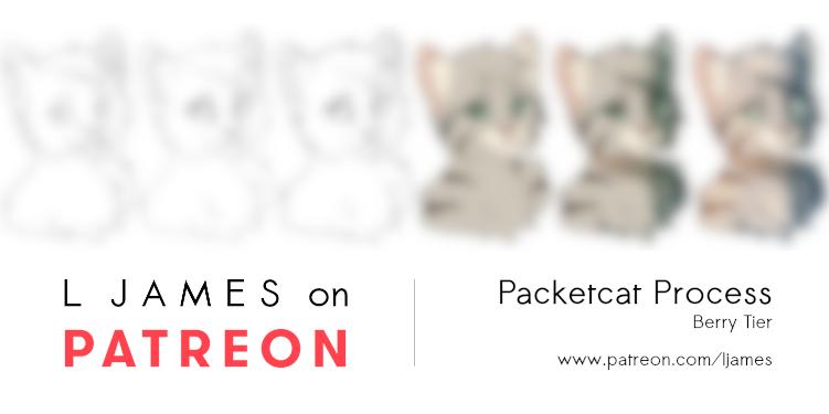 [Patreon] Packetcat Process