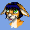 Avatar for Koray Bunnycatalyst