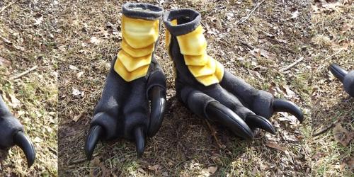 Raptor feet