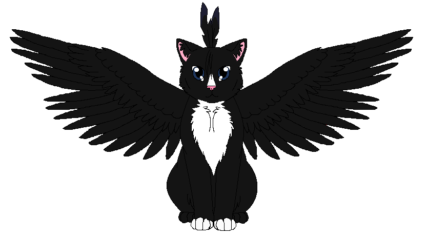 Winged Kitty