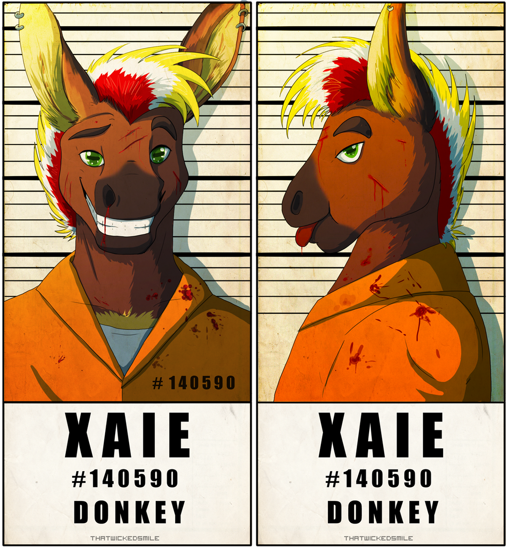 Police Line Up - Xaie