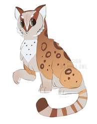 Owl/Snow Leopard Adoptable