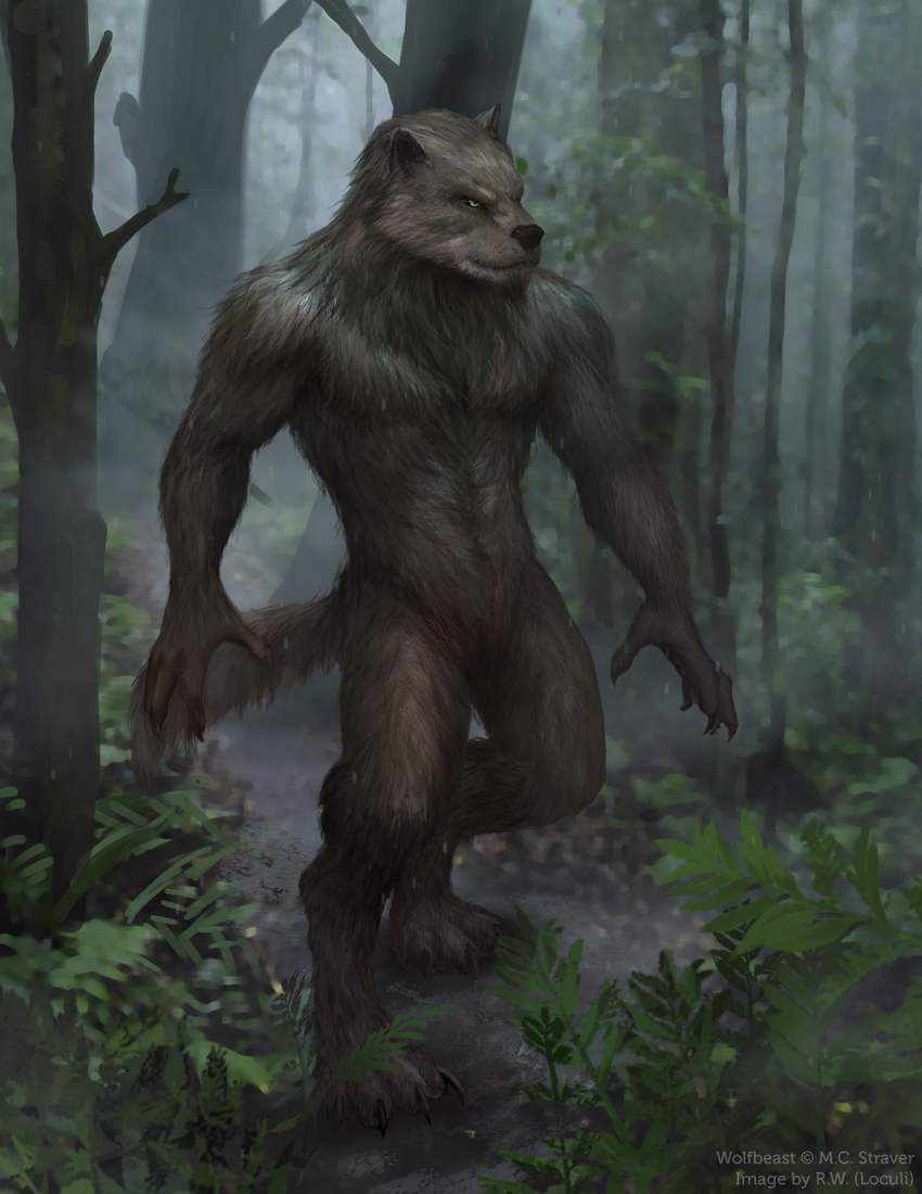 Wolfbeast character image (commissioned)