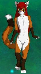 Foxcat Bazami