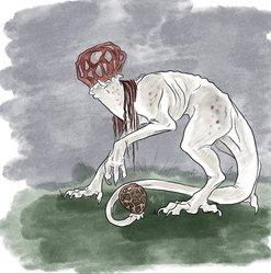 Mayshroom Lattice stinkhorn