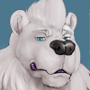 avatar of PolarBerner