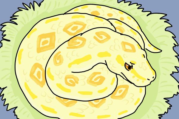 Not a snake day