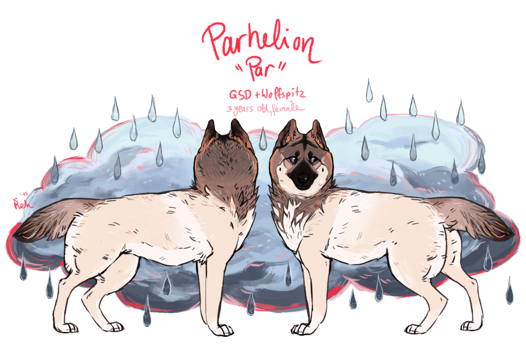 Most recent image: Parhelion Reference (dogsona)