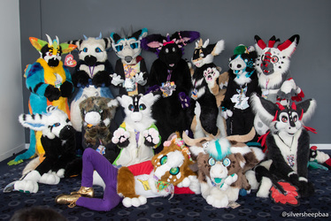 FurDU 2019: Dutchy Floof Pile