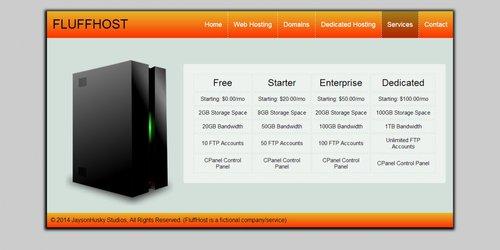 FluffHost - Web Hosting Service