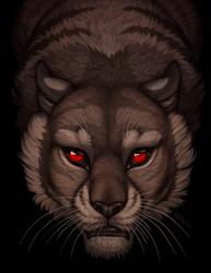The Predator's Eye