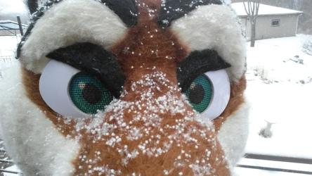 Snow on Crygus