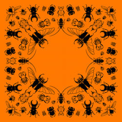 Beetle Bugdana! Preorders Available Now!