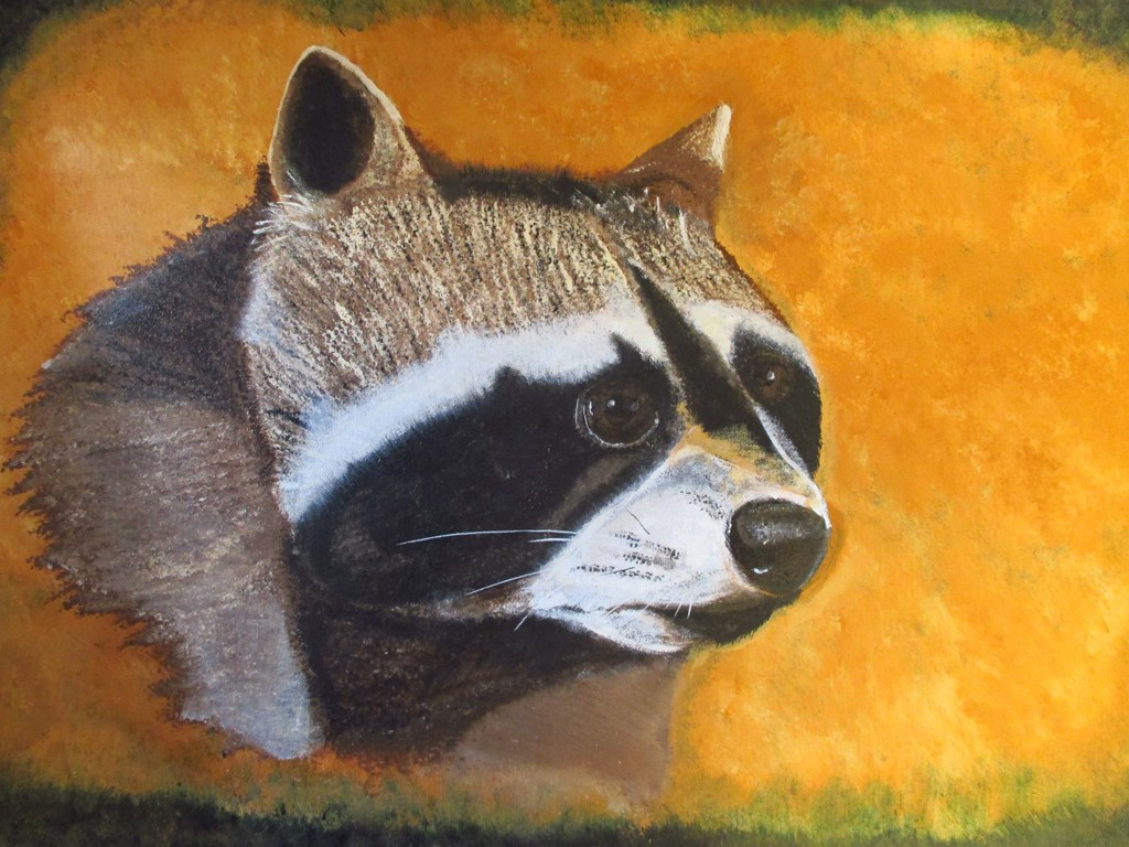 Raccoon head painting