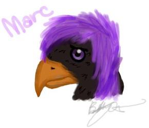 Marc Phoenix sketch