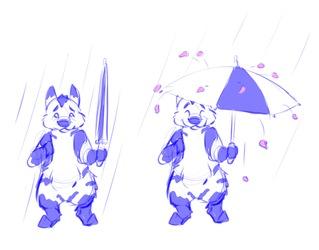 [Personal] Umbrellasplosion