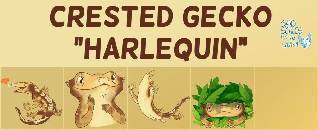 Telegram Stickers - Harlequin Crested Gecko