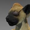 avatar of Cyjal