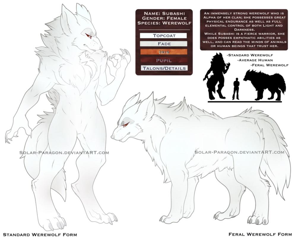 Subashi's Werewolf Ref Sheet — Weasyl