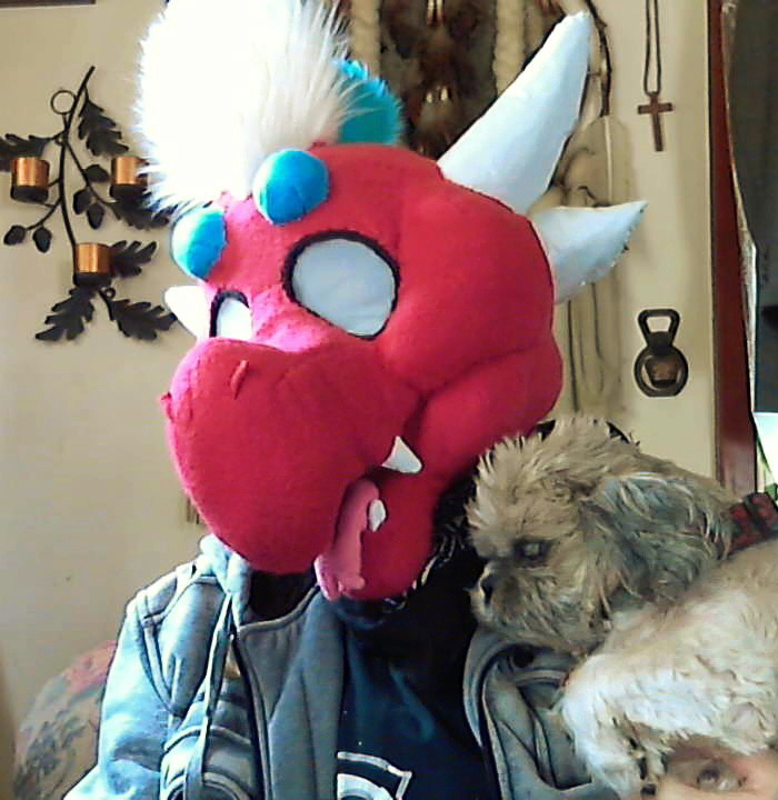 Dragons and Dogs Can Be Friends :)