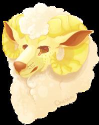 Lemon Bust