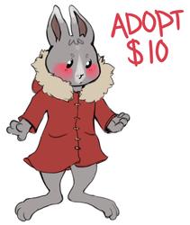 $10 ADOPTABLE RABBIT