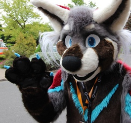 - How to find me at Eurofurence! -