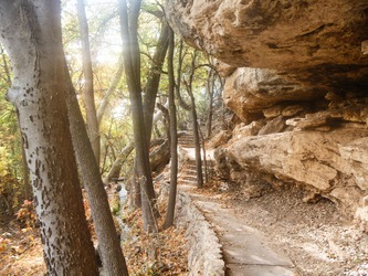 Serene Stairway