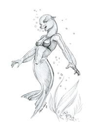 Lady Seal