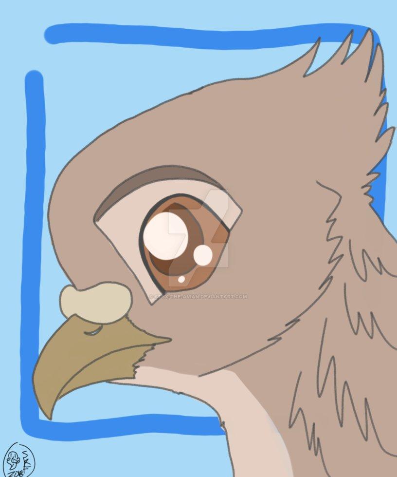 OTA: Pigeon