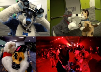 Further Confusion 2016 (Convention Video)