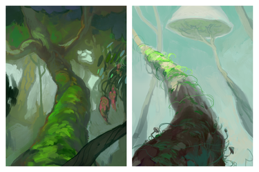 Forest Warmups
