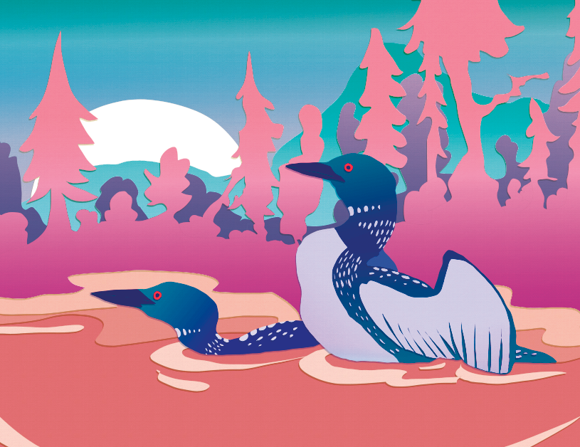 Most recent image: loons