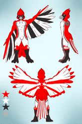Star Burst Cardinal [Character Ref]