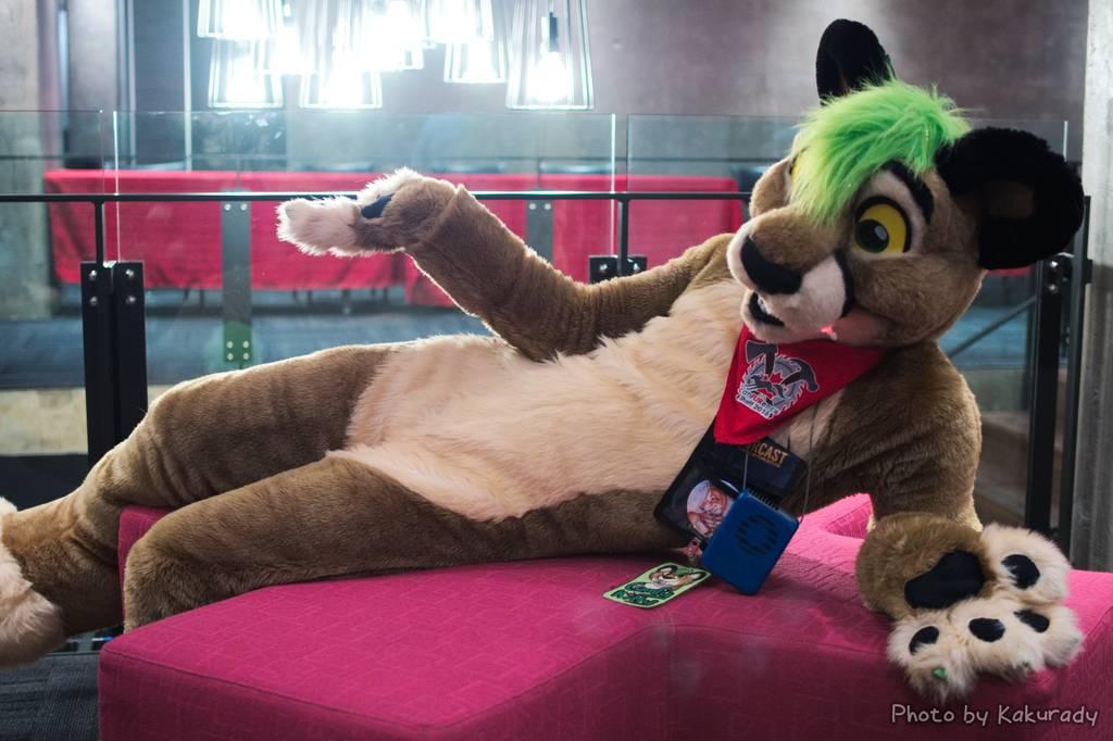 Canfurence 2016 - Comfy Kitty