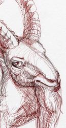 :Commission: Ibex Portrait