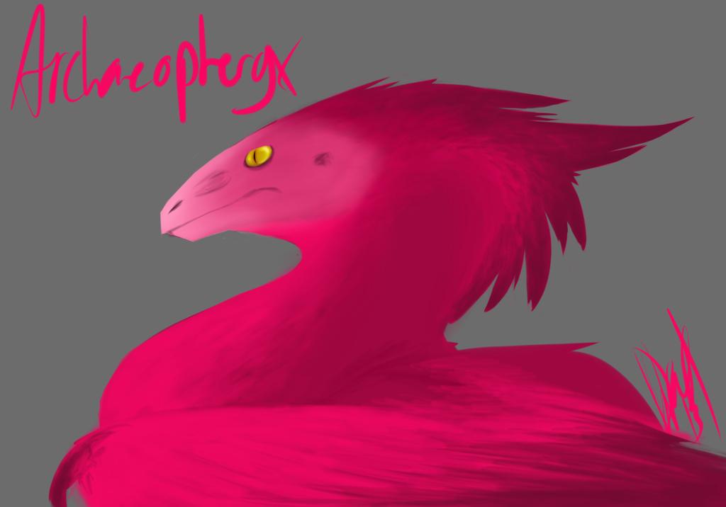 Pink Archaeopteryx