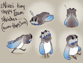 TinyTaum