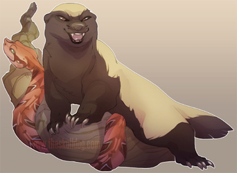 Honey Badger + Gaboon Viper