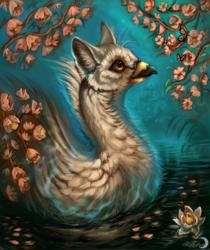 Swancat