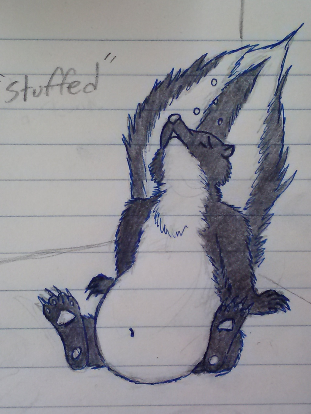 Most recent image: Stuffed Skunk