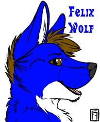 Felix Wolf Badge