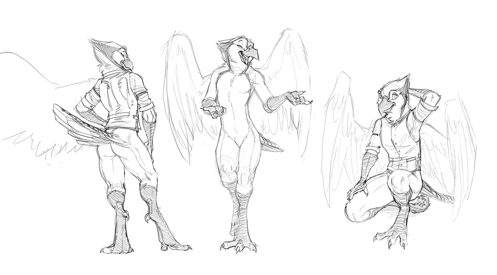 Most recent image: Bluejay Sketches