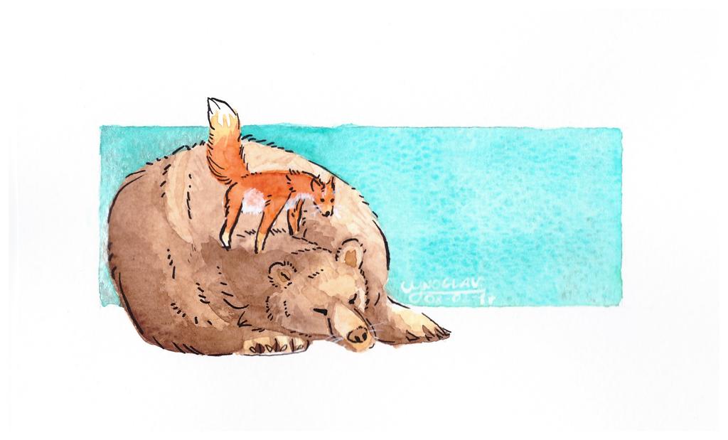 the bear and the fox