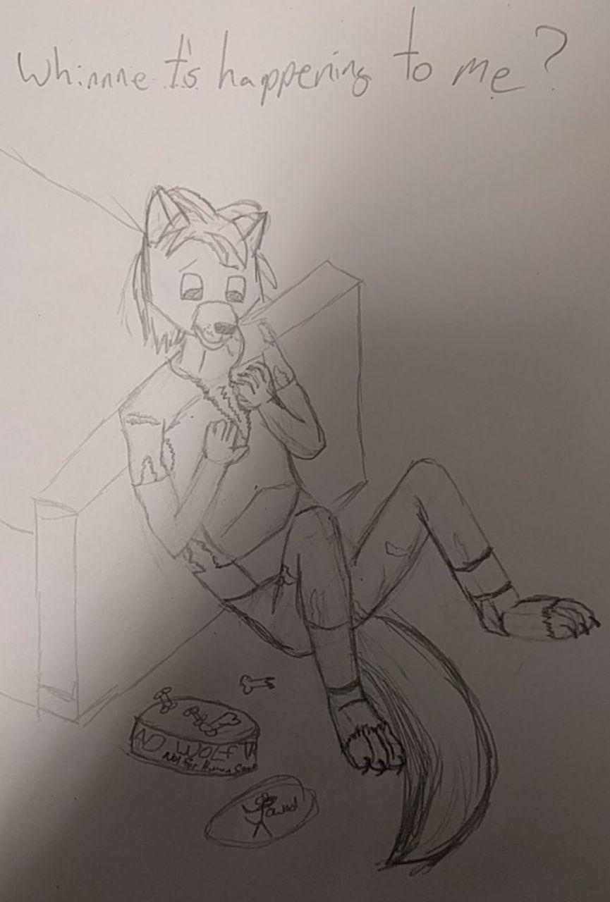 Most recent image: Bad Wolf Treats